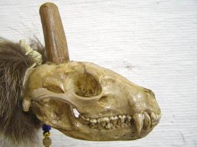Skull Pipe - Raccoon