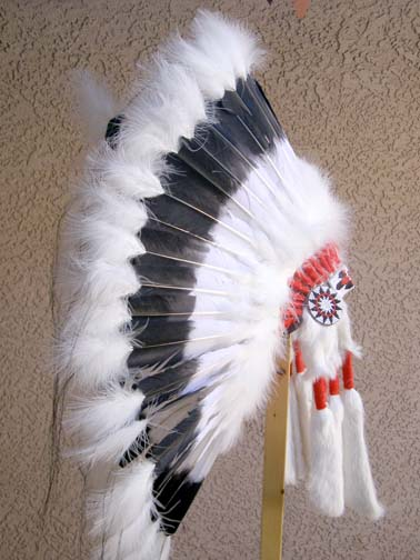 Black Cloud Warbonnet